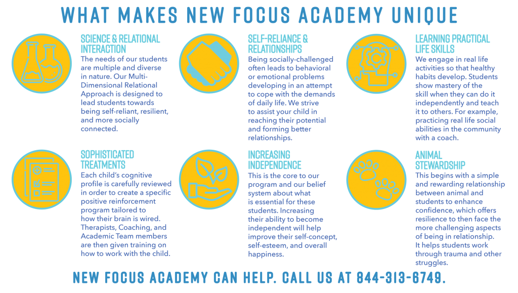 Teens With Autism Brain Injuries And >> Autism Program For Teens New Focus Academy